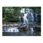 Liffey falls, Tasmania Postcard