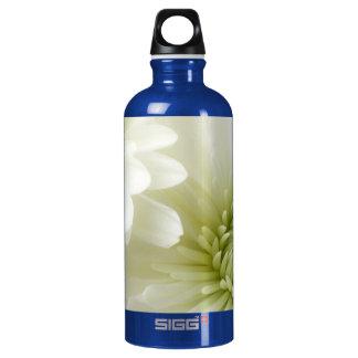 Lift Me Higher Aluminum Water Bottle
