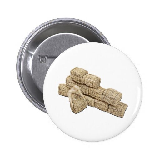 LiftingBaleHay070911 Pin