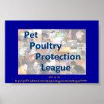 Liga de la protección de las aves de corral del ma poster