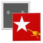 Liga nacional para la democracia, bandera de Myanm Pin