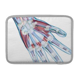 Ligamentos en la mano fundas para macbook air