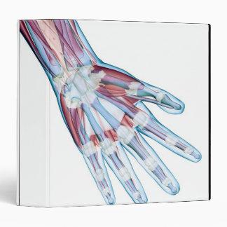 Ligaments in the Hand Vinyl Binder