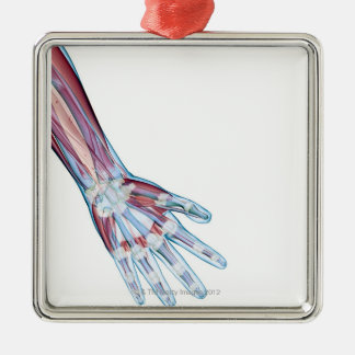 Ligaments in the Hand Metal Ornament