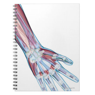 Ligaments in the Hand Notebook
