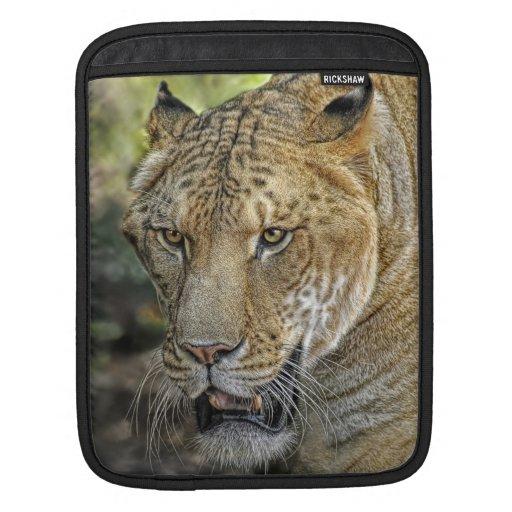 Liger Half Lion Half Tiger Sleeve For iPads