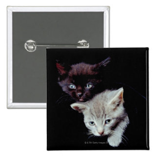 Light and Dark Kittens Button