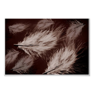 Light As A Feather (Canvas Print) Poster