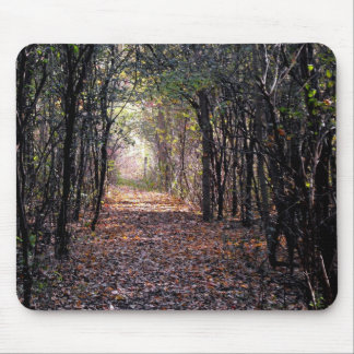 Light at the end of the Path Mouse Pad