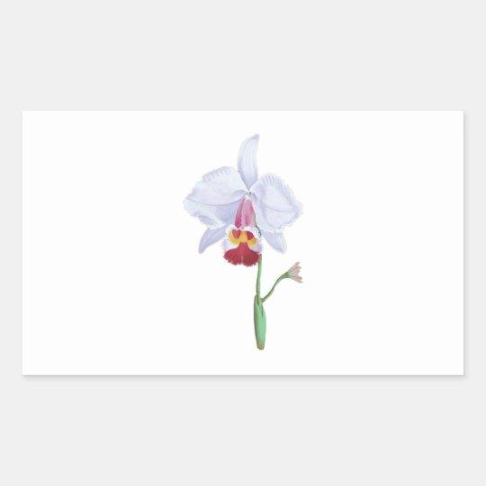 Light Blue And Pink Flower Rectangular Sticker
