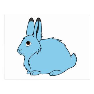 Light Blue Arctic Hare Postcard