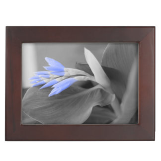 Light Blue Buds selective color Memory Box