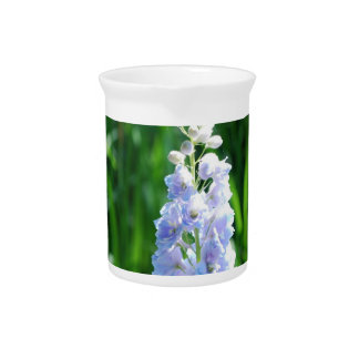 Light Blue Delphinium Pitcher