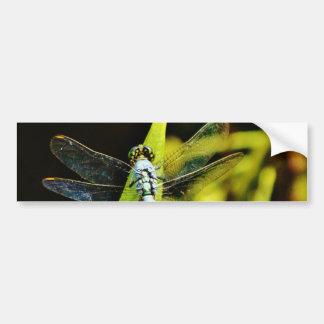 Light Blue Dragonfly Bumper Sticker