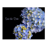 Light Blue Hydrangeas Floral Save the Date Cards
