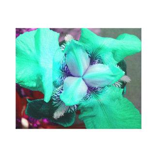 Light Blue Iris Canvas