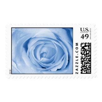 light blue stamp
