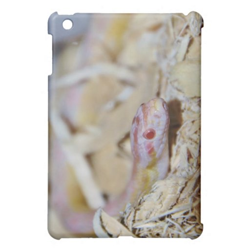 Light Colored Corn Snake Cover For The iPad Mini