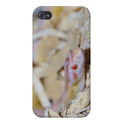 Light Colored Corn Snake Cover For iPhone 4