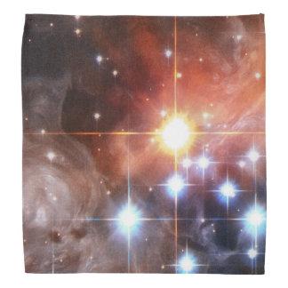 Light Echo Around V838 Monocerotis Bandana