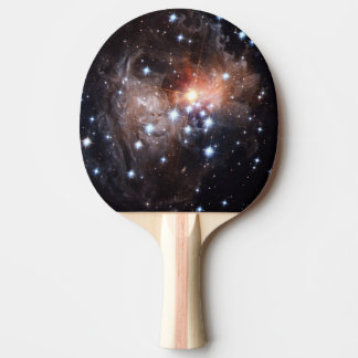 Light Echo from Star V838 Ping-Pong Paddle