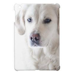 Case Savvy iPad Mini Glossy Finish Case with Golden Retriever Phone Cases design