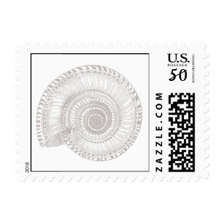 Light Gray Sea Shell Postage Stamp