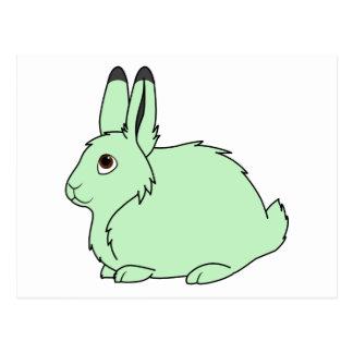 Light Green Arctic Hare Postcard