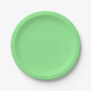 Light Green Paper Plate  sc 1 st  Zazzle & Plain Light Green Plates | Zazzle
