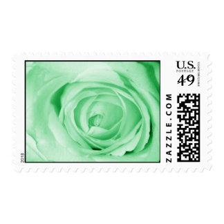 light green postage stamp