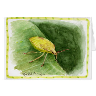 Light Green Stink Bug Card
