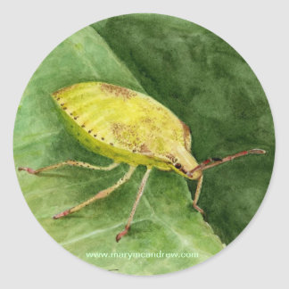 Light Green Stink Bug Classic Round Sticker