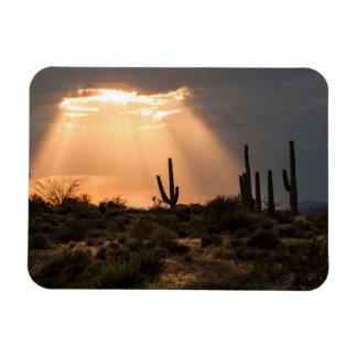 Light in the Desert Magnet