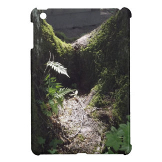Light in the Forest iPad Mini Covers