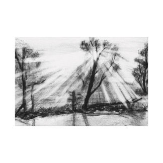 Light in Trees Sketch Canvas Print