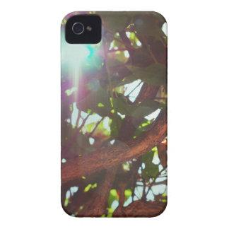 Light Leaks Tree iPhone 4 Covers