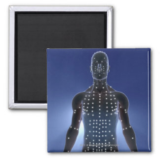 Light map of acupuncture points magnet