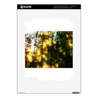 Light messengers iPad 3 skin