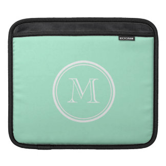 Light Mint Green High End Colored iPad Sleeve