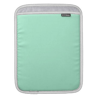 Light Mint Green High End Colored Matching iPad Sleeves