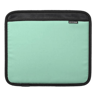 Light Mint Green High End Colored Matching iPad Sleeve