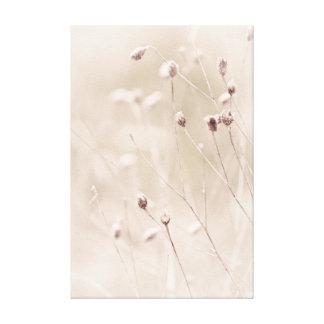 Light Neutral Subtle Tiny Delicate Dried Plants Canvas Print