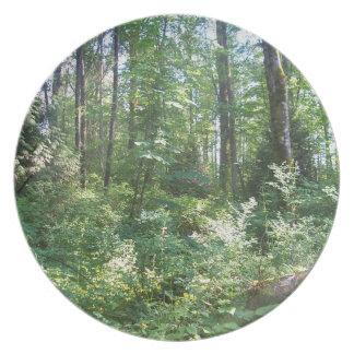 light on leaves melamine plate