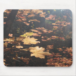Light on the Leaves (4) Mousepad