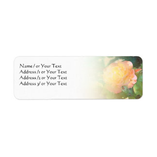 Light Orange Rose Custom Avery Label
