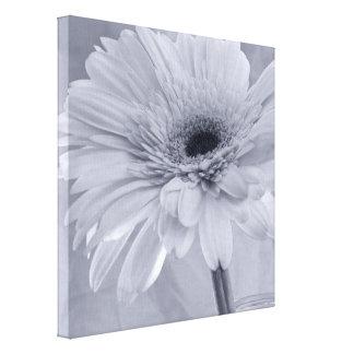 Light Pale Blue Daisy Flower Canvas Print