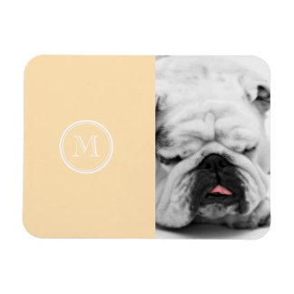 Light Peach High End Colored Rectangular Photo Magnet