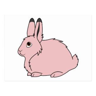 Light Pink Arctic Hare Postcard