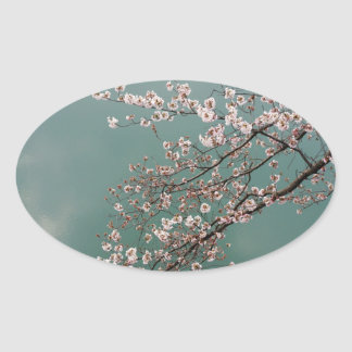 Light pink cherry blossoms on turquois background oval sticker
