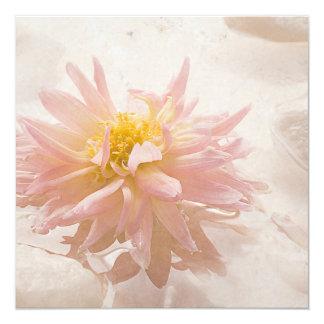 Light Pink Dahlia Flower - Dahlias Flowers Floral Card